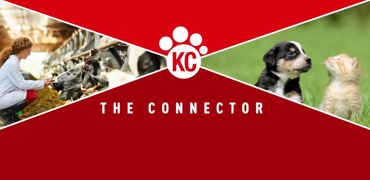 KCAnimalhealth-TheConnector